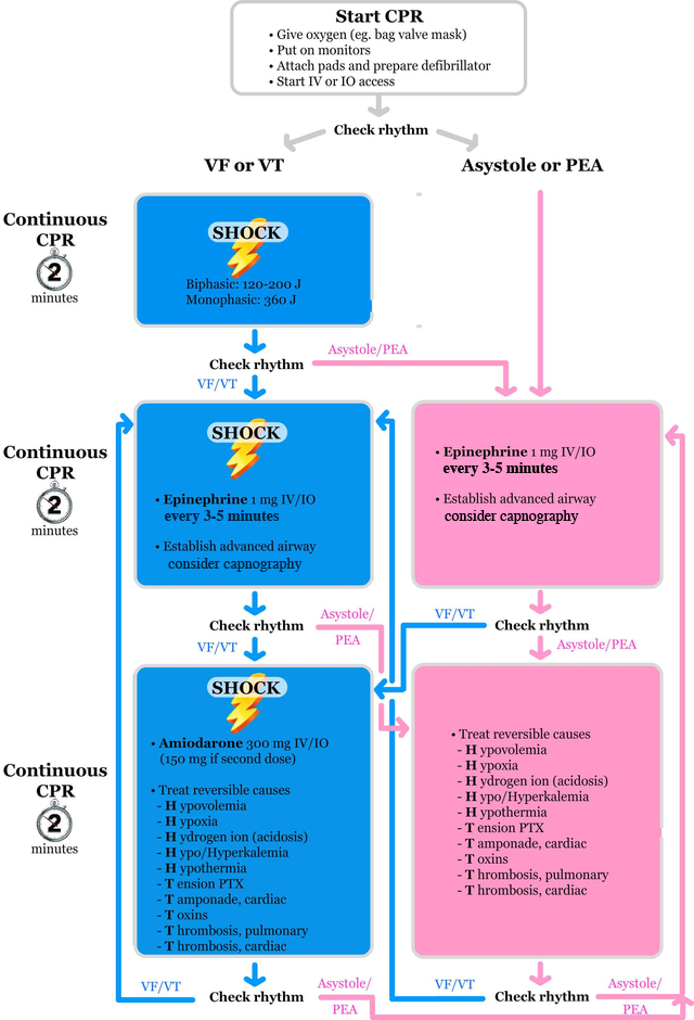 2015 ACLS cardiac arrest algorithm