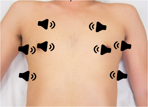 Transducer positions for the 8 lung zones