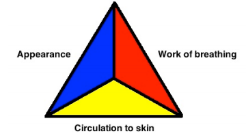 Pediatric assessment triangle