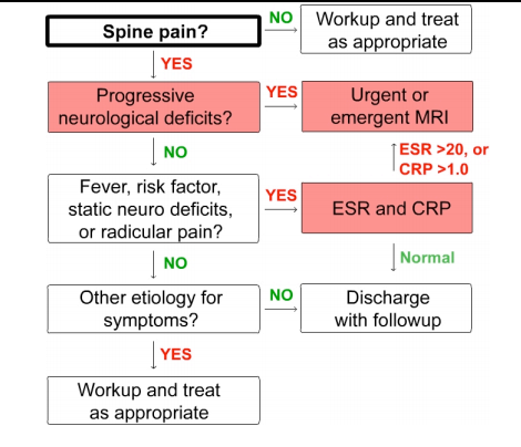 Spinal epidural abscess guideline flowchart